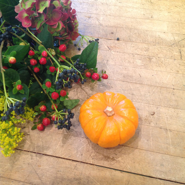 To start dried flowers, berries and jack be little pumpkins