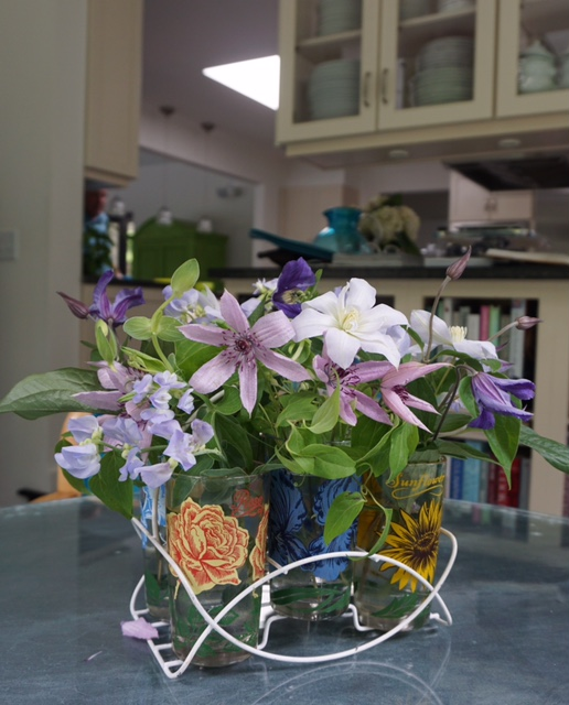 Clematis in Carrier copy
